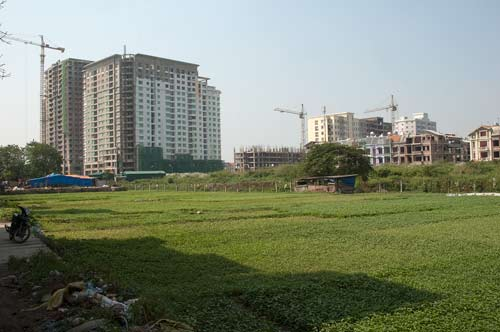 Neighbouring Fields