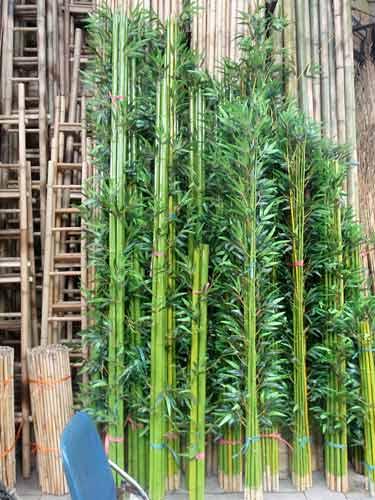 bamboo, Hanoi, Vietnam