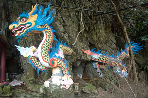dragon at Thien Tru Pagoda