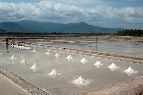 salt harvesting, Kampot, Cambodia