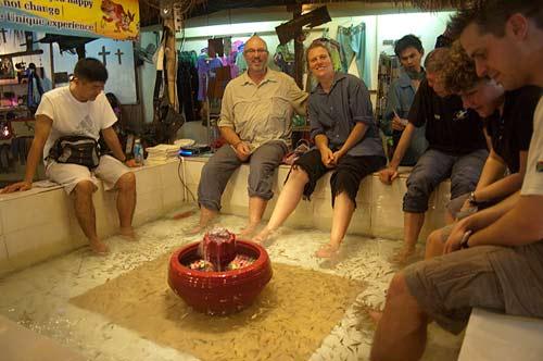 fish massage tank, Siam Reap, Cambodia