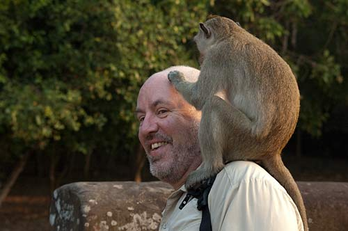 monkey on my back, Angkor Wat, Cambodia