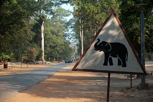 elephant sign, Angkor, Cambodia