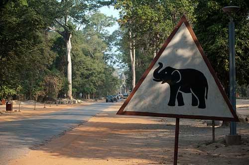 elephant sign, Angkor, Cambodia
