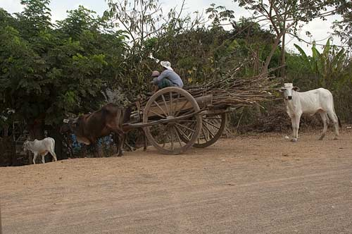 wooden cart, Battambang, Cambodia