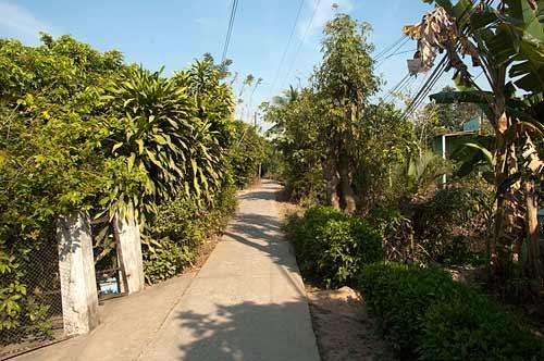 lane on An Binh Island, Vietnam