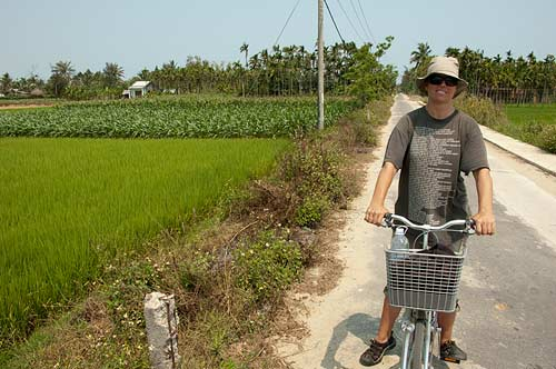 road among rice paddies, Hoi An, Vietnam
