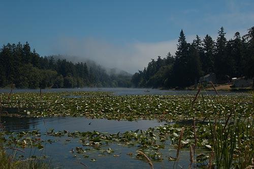 Magic Lake, Pender Island, BC