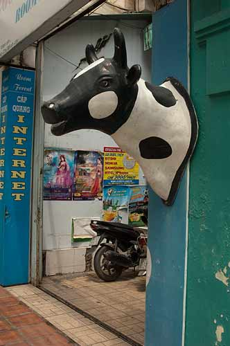 dairy products store, Saigon, Vietnam