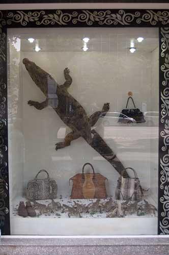 crocodile products, Ho Chi Minh City, Vietnam