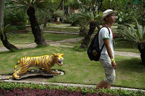 tiger in the park, Ho Chi Minh City, Vietnam