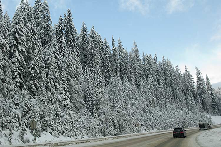 snowy Trans Canada Highway