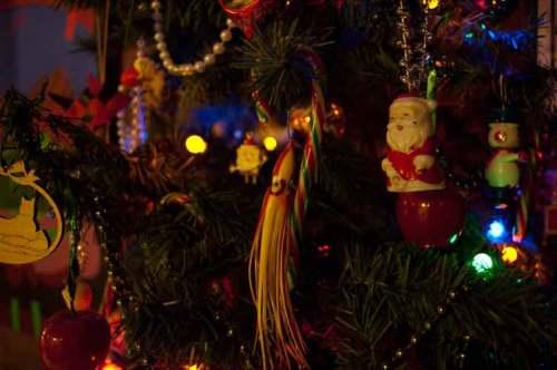 Pender Island, BC Christmas tree