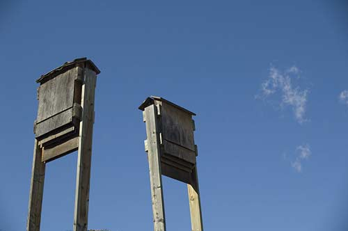 birdhouses at Desert Centre, Osoyoos, BC