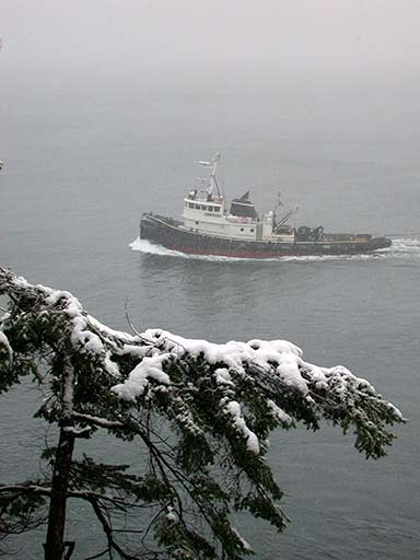 tug in snowstorm, Pender Island, BC