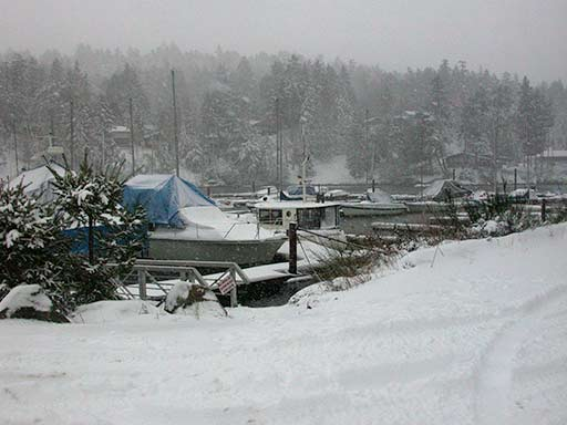 Thieves Bay, Pender Island in snow