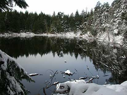 Roe Lake, Pender Island in the snow