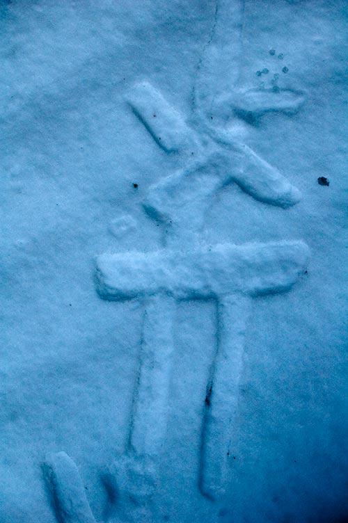 random symbol in snow, Pender Island, BC