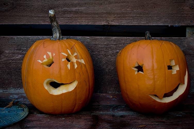 Pumpkins, Pender Island, BC