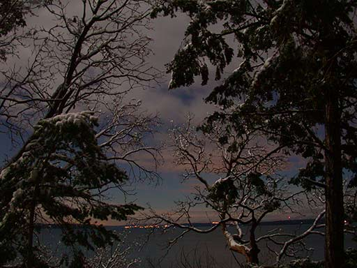 snow scene at night, Pender Island, BC