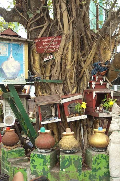 tree shrine in Yangon, Myanmar