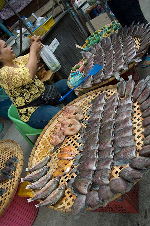 fish for sale in market, Bangkok, Thailand