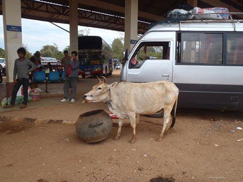 southern bus terminal, Pakse, Laos