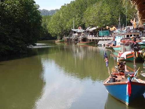 mangrove lined waterway, Koh Chang, Thailand