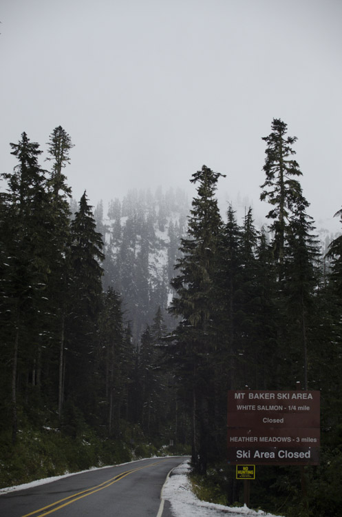 Snow along Mount Baker highway