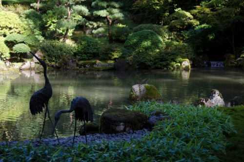 Japanese Garden, Washington Park, Portland, Oregon