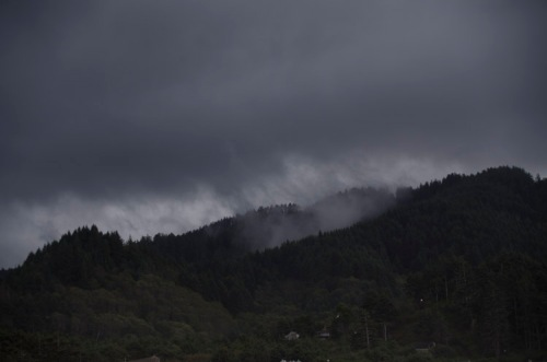 Oregon Coast hills and rain