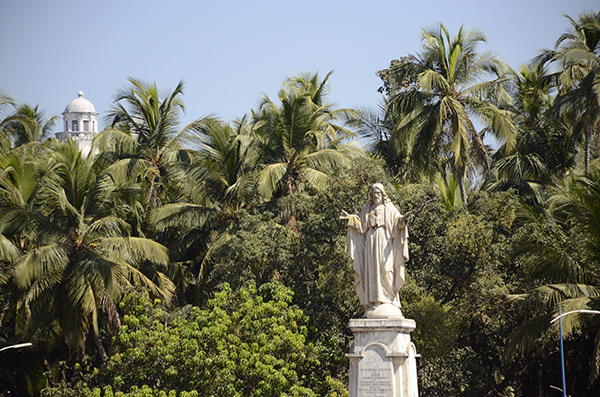 old-goa-palms