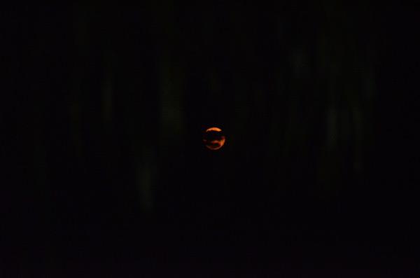 alleppey-full-moon