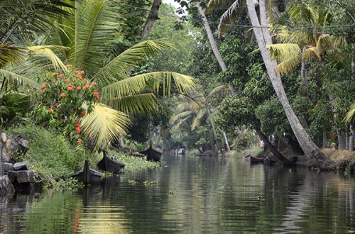 alleppey-sm-canal
