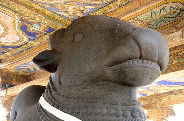thanjavur-temple-nandhi