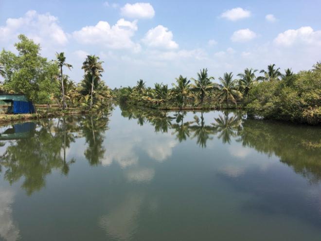 Monroe Island waterways, Kerala, India