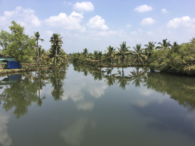 Monroe Island waterways, Kerala, India