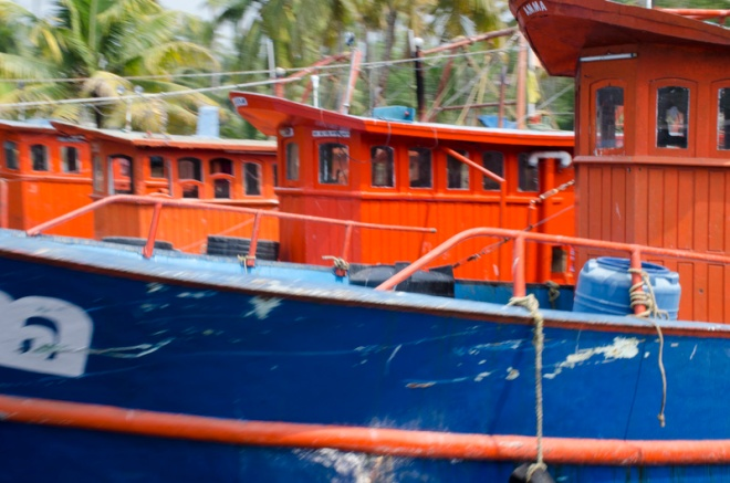 a fleet of boats on a canal in the backwaters, Kerala, India
