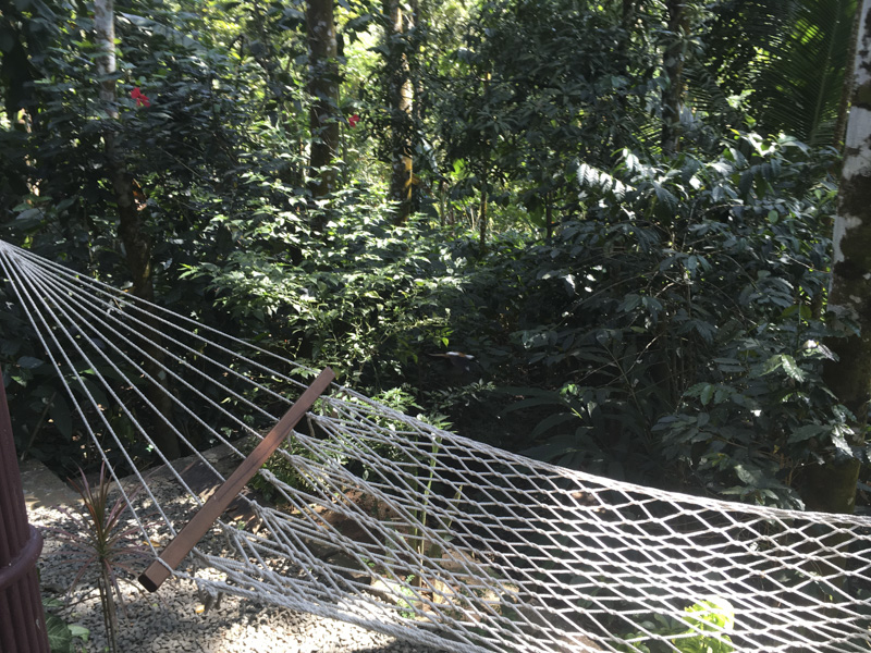 hammock at the Green Periyar Homestay