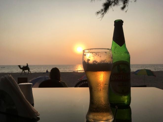 Sunset and Camel on Agonda Beach, Goa, India