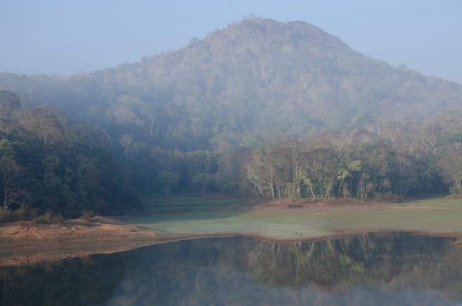 morning mist at Periyar Wildlife Sanctuary, India