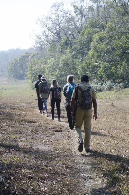 walking in the Periyar Wildlife Sanctuary, India