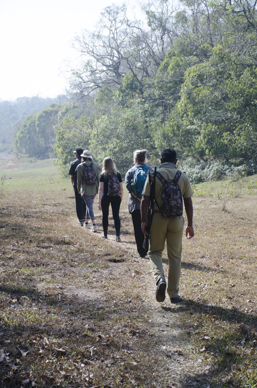 walking in the Periyar Wildlife Sanctuary, India