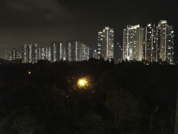 night view from the City Oasis Guesthouse