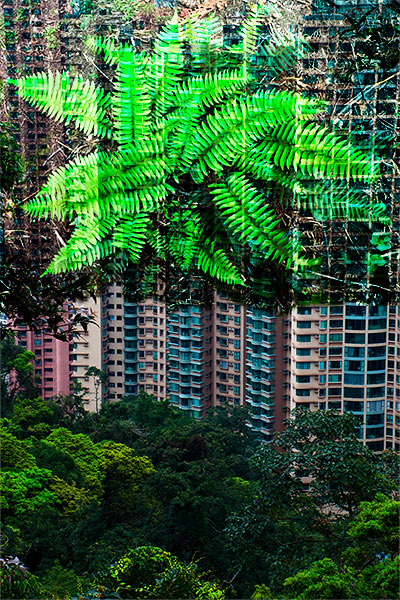 digital collage by Kelly Irving called Hong Kong Green Space